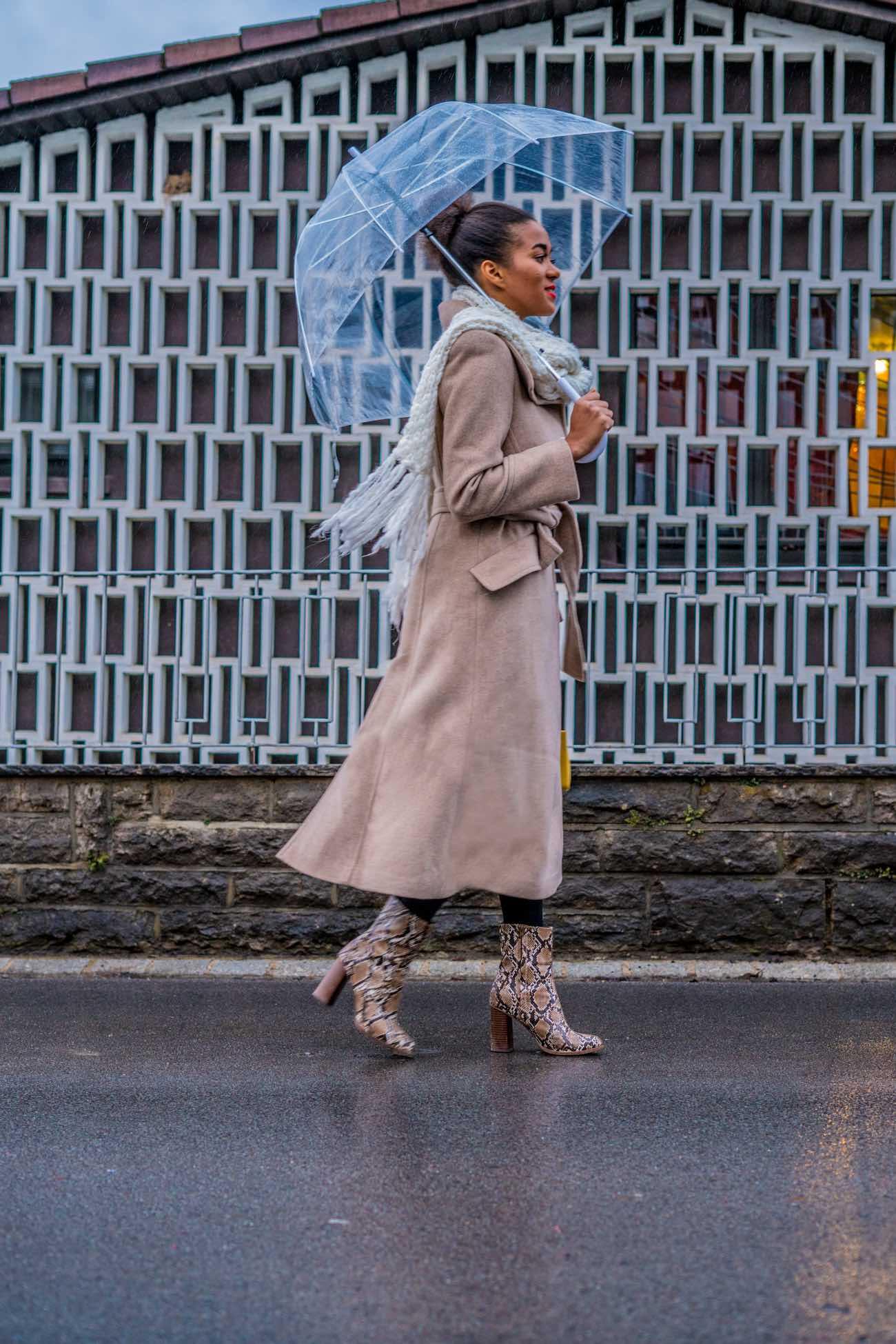 Blogger Apps in 2019, transparent umbrella, snake print