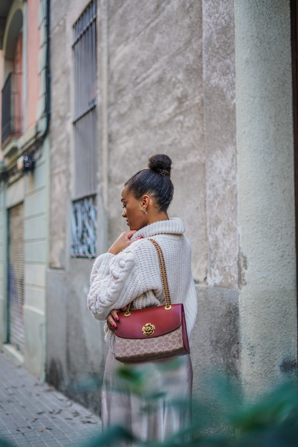 coach bag brown