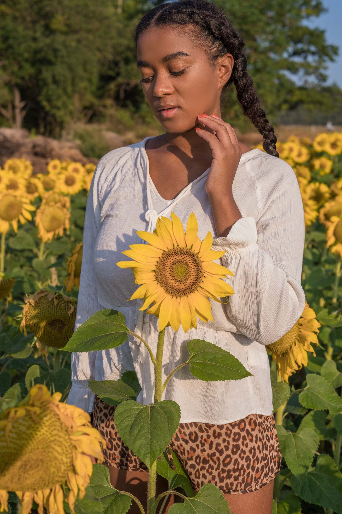 Blogger Pictures in a Sunflower field