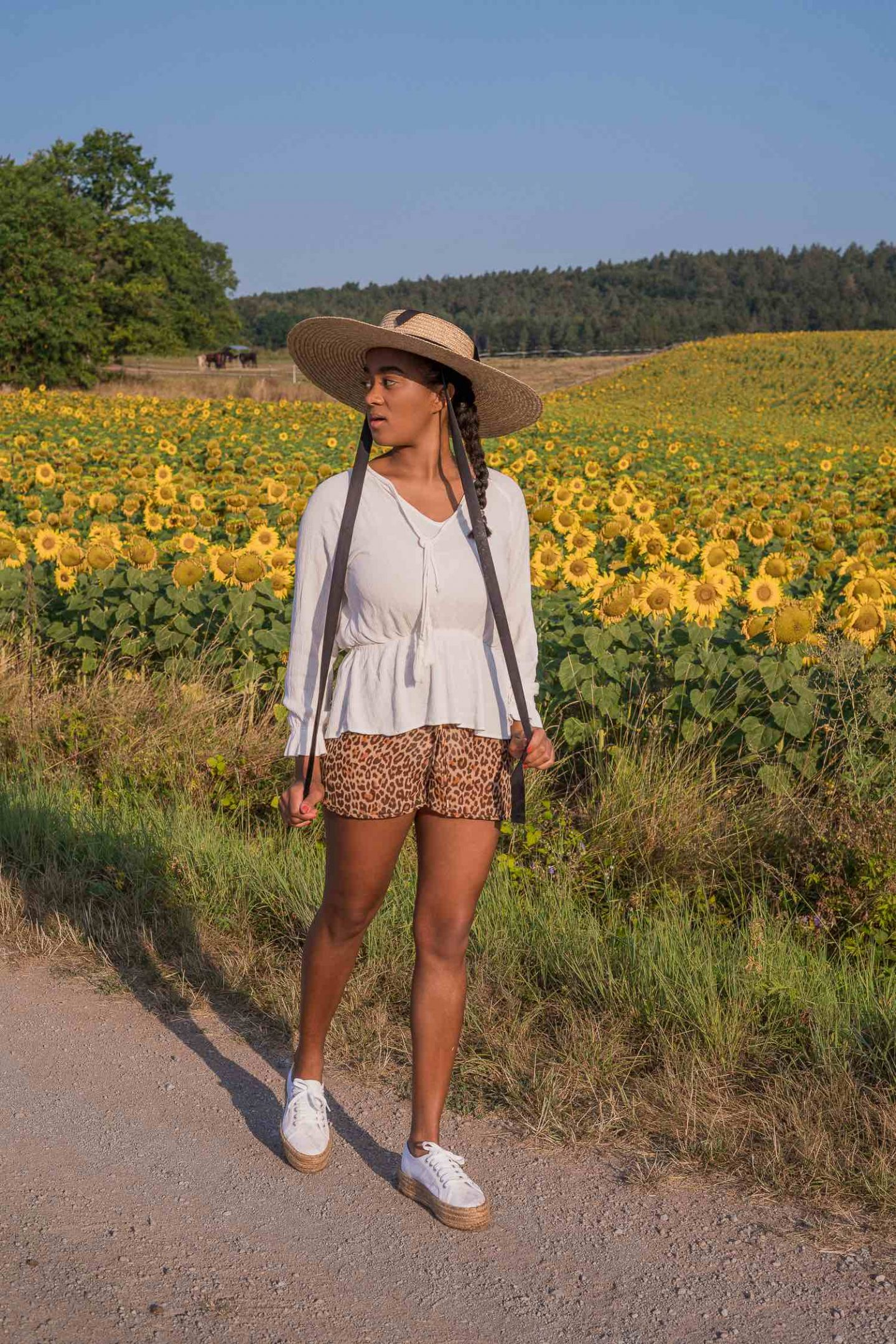 Photoshooting in a sunflower field, pictures in a flower field, straw hat in summer