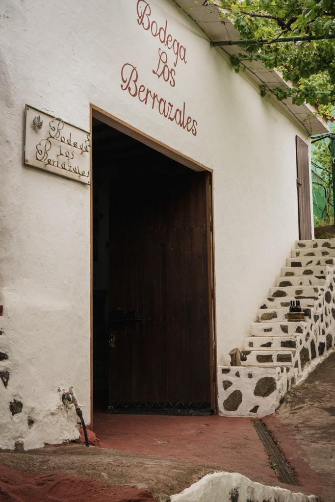 coffee plantation in Europe Gran Canaria coffee plantation
